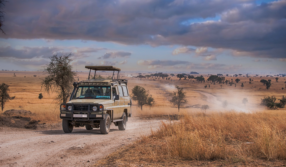 jeeb-safari